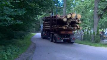 01-09-2017 17:48 Ostrzeżenie dla firm kupujących drewno z Puszczy Białowieskiej. Wydała je Rada ds. Odpowiedzialnej Gospodarki Leśnej