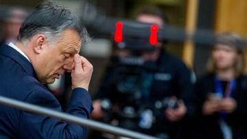 Węgierska prasa: podoba się to Polakom czy nie, wybór Tuska jest już nieodwracalny