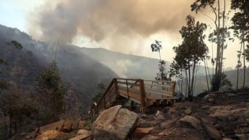 """12-08-2016 21:29 """"Zorganizowana grupa przestępcza"""". Szalejące w Portugalii pożary to w większości efekt podpalenia"""