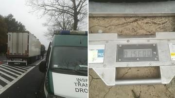 """24-10-2017 15:20 O 15 ton kociego jedzenia za dużo. Kierowca starał się je """"ukryć"""" przed inspektorami"""