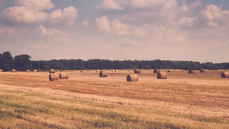 Dodatkowy miliard zł na zaliczki na poczet dopłat dla rolników