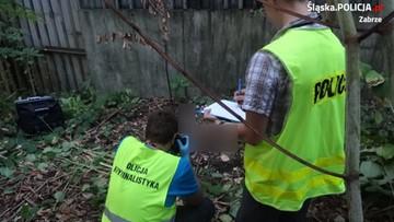 29-05-2017 13:04 Wróżka z Włoch pomogła zidentyfikować zwłoki w Zabrzu znalezione niemal dwa lata temu