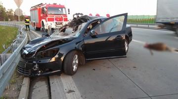 19-06-2017 20:57 Samochód osobowy zderzył się z łosiem na trasie S8. Dwoje rannych, zwierzę nie przeżyło