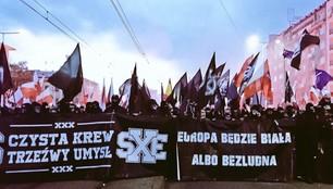 Jest śledztwo ws. propagowania faszyzmu na Marszu Niepodległości