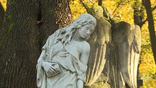 Internauci upominają się o pomnik na grobie telewizyjnego 40-latka