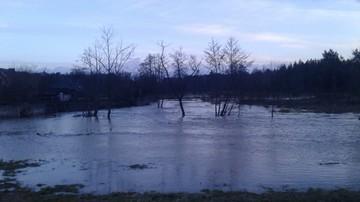 2017-02-24 Podtopienia i powódź koło Biłgoraja (Lubelszczyzna). Wylała rzeka Biała Łada