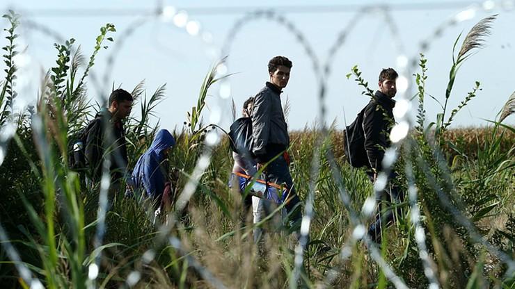 Kolejny Tunezyjczyk powiązany ze sprawcą zamachu w Berlinie wydalony z Włoch