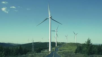 """17-08-2017 07:55 Ministerstwo chce zastąpić spójnik """"a"""" spójnikiem """"albo"""". Farmy wiatrowe znów można by budować tuż obok domów"""