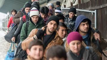 05-01-2016 20:59 MSWiA: uchodźcy powinni trafić do Polski w 2017 roku