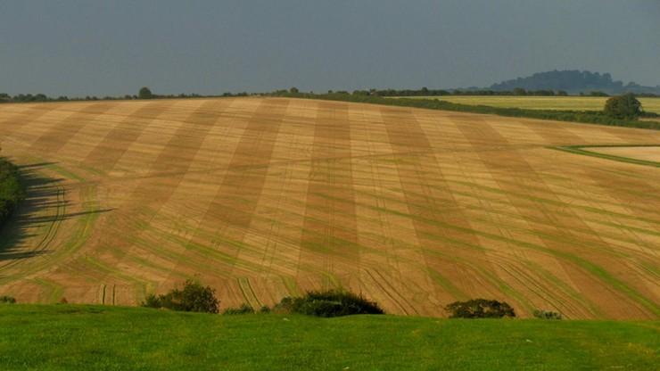 Resort rolnictwa: ziemię rolną będzie można przekazać Kościołowi lub związkowi wyznaniowemu