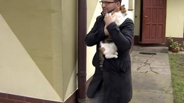 Rybki zjedzone przez koty. Sąd uznał ich właściciela za winnego.