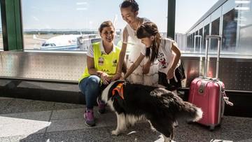 17-07-2017 06:13 Włochy: psia terapia na mediolańskich lotniskach
