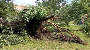 30-06-2017 07:11 Zerwane dachy, połamane drzewa. Sześć osób rannych po przejściu nawałnic nad Polską