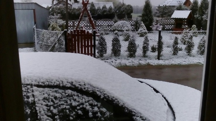 Okolice Koła (woj. wielkopolskie): śnieżyca w Wielkanocny Poniedziałek