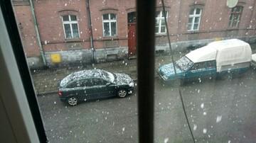 2017-04-27 Zima wróciła do Gliwic (woj. śląskie). Rano spadł tam śnieg