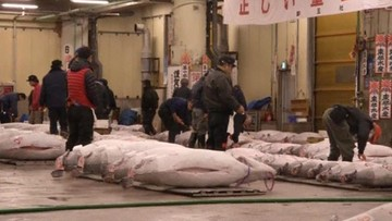Japonia: 108 tys. euro za tuńczyka na ostatniej noworocznej aukcji na słynnym targu