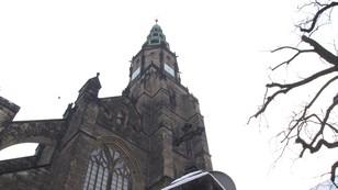 W Świdnicy liczą nietoperze. Ssaki zamieszkały w katedrze