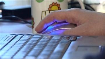 Kradzieże bankowe i podszywanie się. Coraz więcej cyberprzestępstw w Polsce