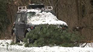 Atak zimy w Małopolsce. Trwa usuwanie skutków silnego wiatru i opadów śniegu