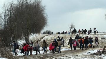 19-01-2016 21:02 Węgry deklarują: jesteśmy gotowi postawić ogrodzenia na granicy z Rumunią