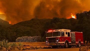 """10-07-2017 09:36 Około 5 tys. strażaków walczy z pożarami w Kalifornii. """"Ściana ognia"""""""