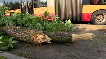 Konar spadł na autobus w stolicy. Nawałnice nad Polską. Zalane ulice, wyłączenia prądu