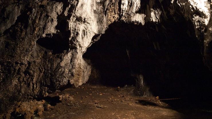 Legenda o Łokietku może być faktem. Średniowieczne zabytki znalezione w jaskiniach na Jurze