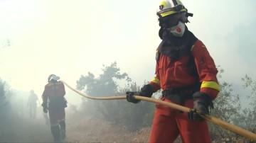 30-06-2017 16:33 Ponad 20 mln euro strat po pożarze w środkowej Portugalii
