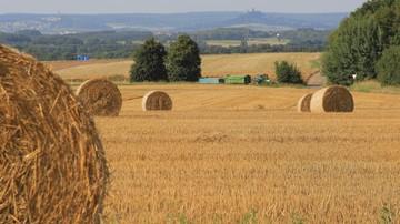 28-07-2016 15:07 Rolnicy będą mogli się starać o 100 tys. zł na działalność pozarolniczą