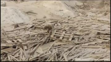 17-03-2017 12:17 Porwała ją lawina błotna, cudem przeżyła. Niezwykłe wideo z Peru