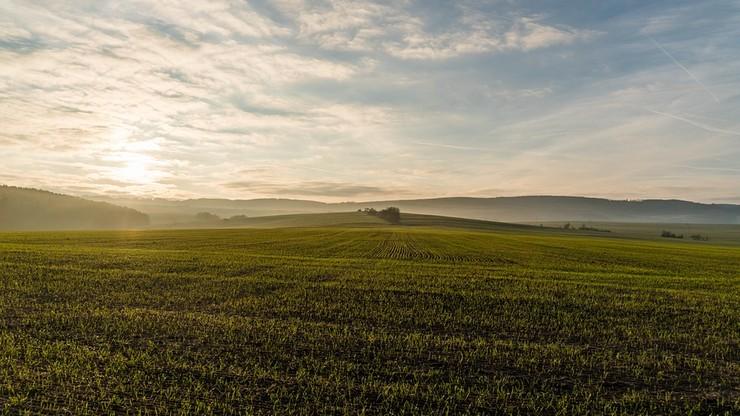 Najwięcej ziemi w Polsce kupują Niemcy i Holendrzy. Raport MSWiA