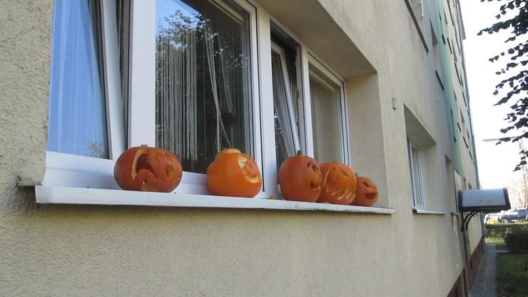 Dynie z Halloween na parapecie w Poznaniu