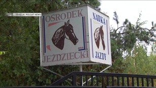 Molestowanie w ośrodku jeździeckim - mężczyźnie grozi nawet 12 lat więzienia