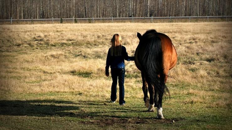 Trener jazdy konnej oskarżony o wykorzystywanie seksualne nieletnich