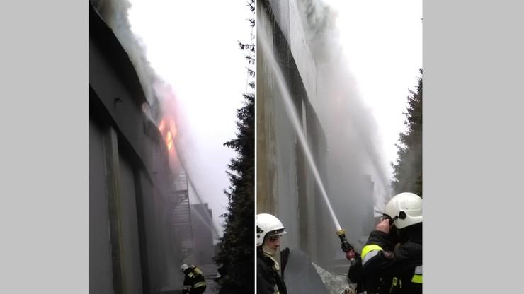 2017-01-01 Pożar w hali zakładów mięsnych Olewnik. Akcja straży pożarnej