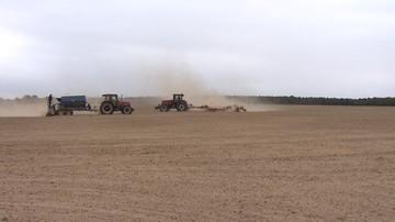 27-06-2017 20:02 Susza rolnicza w dwóch regionach Polski