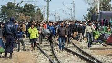 07-03-2016 11:30 Grecja: do 15 marca wywiążemy się z obietnic ws. miejsc dla uchodźców