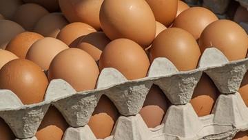 Prawie pół miliona jajek z fipronilem wycofano z rynku w Bułgarii