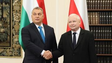 22-09-2017 16:11 PiS: współpraca Polski i Węgier - nadzieją na lepszą przyszłość Europy