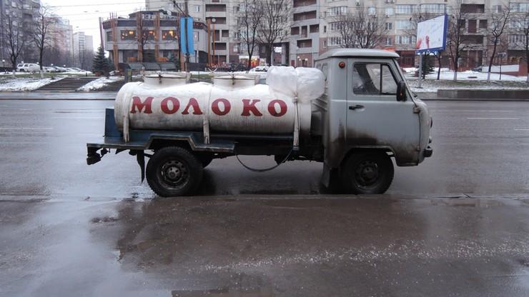 Mleko fałszowane przy pomocy gipsu i kredy. Horror żywnościowy w Rosji