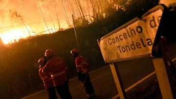 11-08-2016 13:27 UE pomoże Portugalii w gaszeniu pożarów lasów