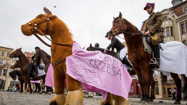 Jurgiel: Doniesienie do prokuratury ws. nieprawidłowości w stadninach koni arabskich