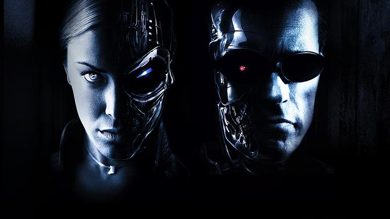Terminator 3: <br>Bunt maszyn