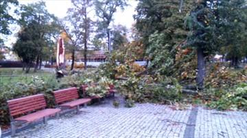 Orkan Ksawery w Kostrzynie nad Odrą