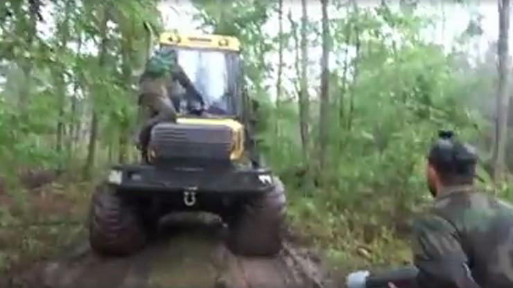 """""""Próbowali nas rozjechać"""". Aktywiści o kierowcy forwardera w Puszczy Białowieskiej"""