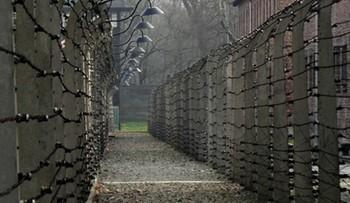 30-09-2016 16:18 Belgom, którzy ukradli izolatory z ogrodzenia Auschwitz grozi 10 lat więzienia