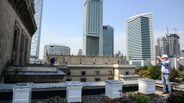 Pszczoły zamieszkały na dachu Pałacu Kultury i Nauki