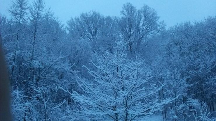 2017-01-14 Zima w okolicach Rzeszowa