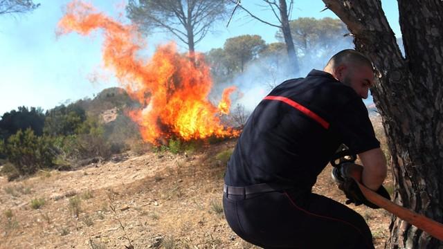 Pożary na Korsyce - setki ewakuowanych, spłonęło już 18 000 ha lasów
