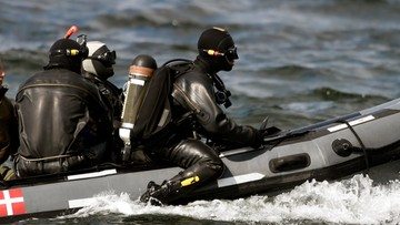 23-08-2017 11:04 Morze wyrzuciło na brzeg rozczłonkowane ciało. Policja potwierdza: to zwłoki szwedzkiej dziennikarki